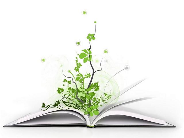 3 յուրօրինակ գրքեր, որոնք կօգնեն սովորել որոշումներ կայացնել